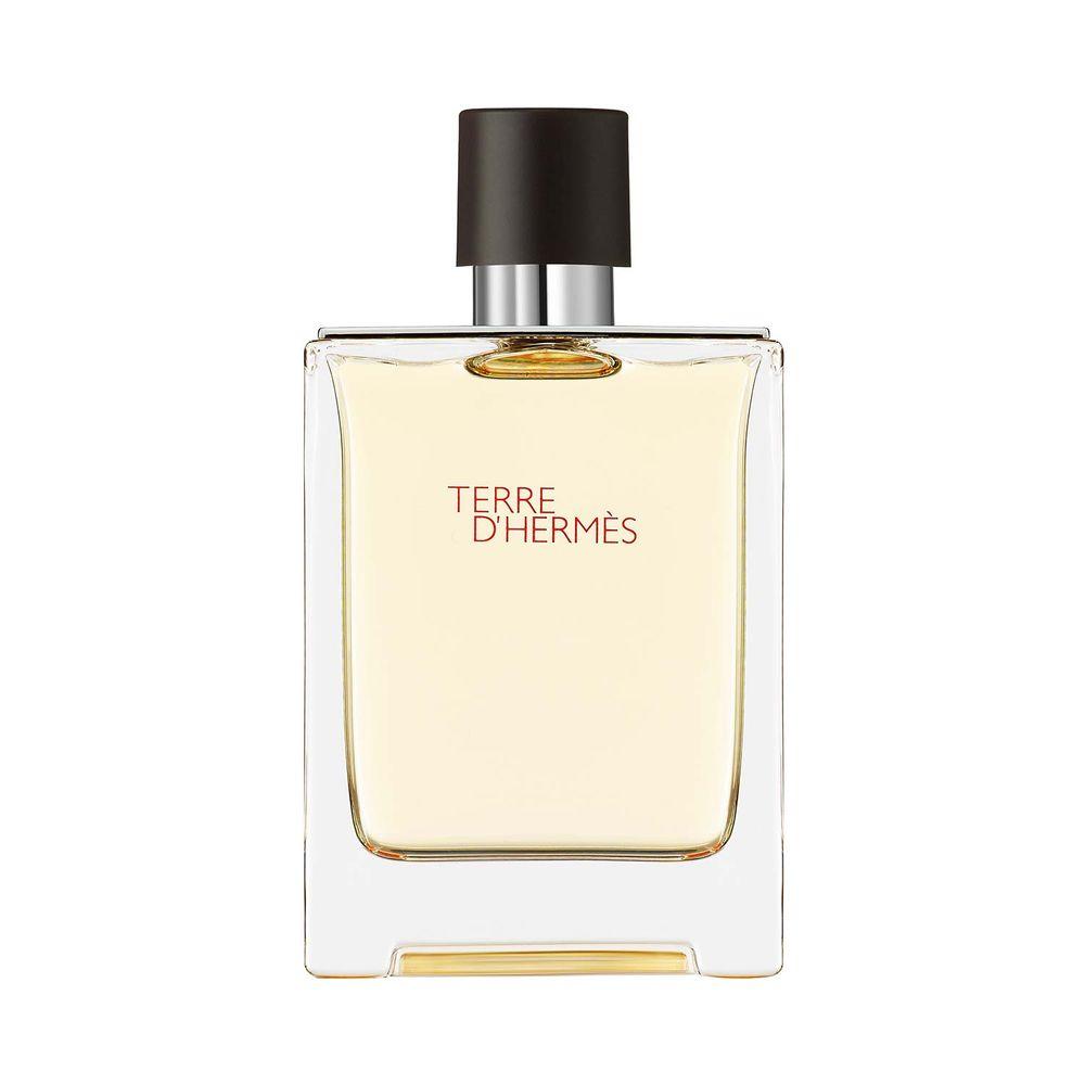Terre d'Hermès Terre D Hermes EDT 100 ml